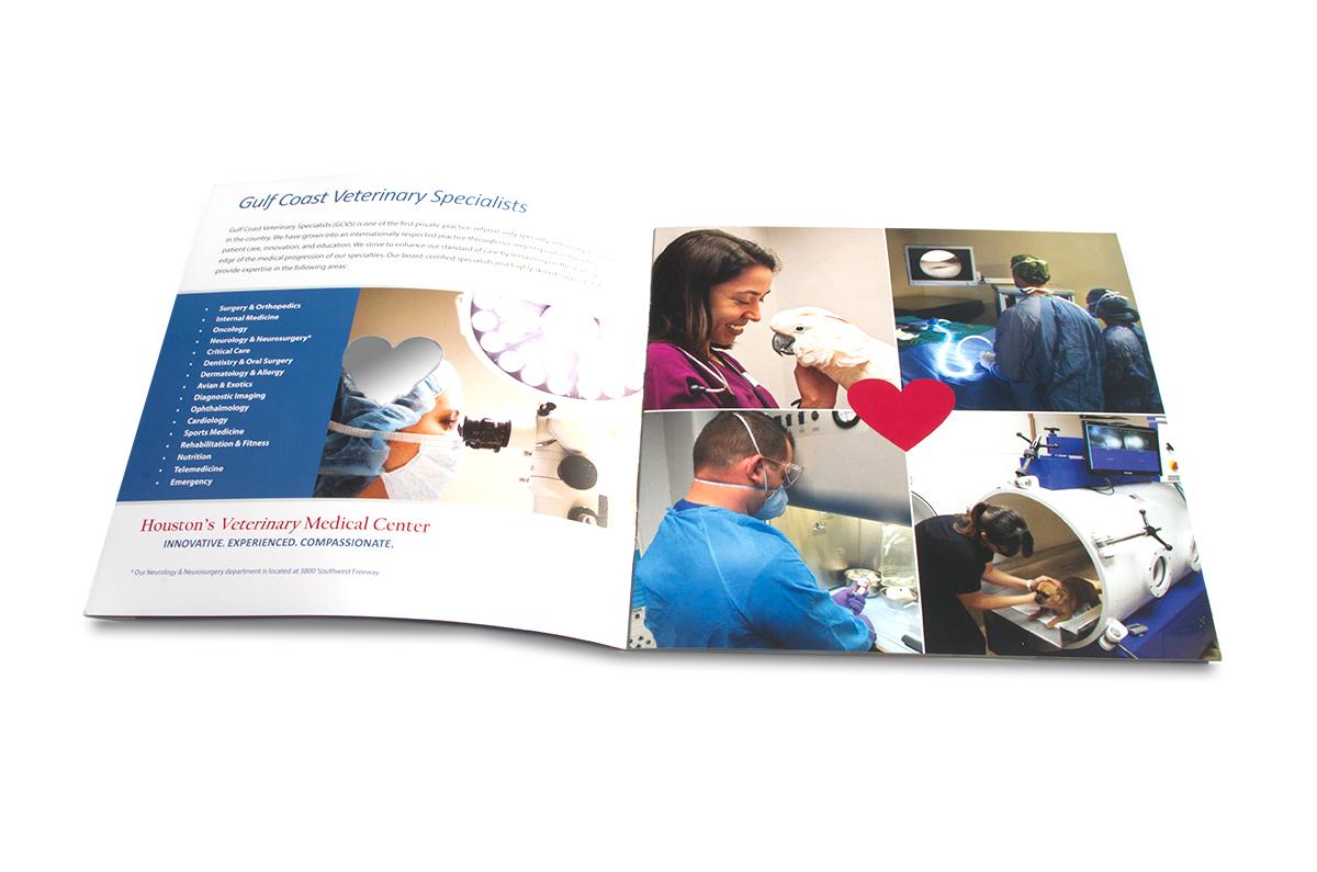 GCVS BrochureInside